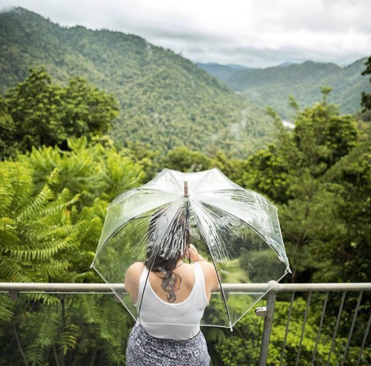 The view from one of the elevated paths on the Mamu Tropical Skywalk. Photo: @therawphoto Instagram