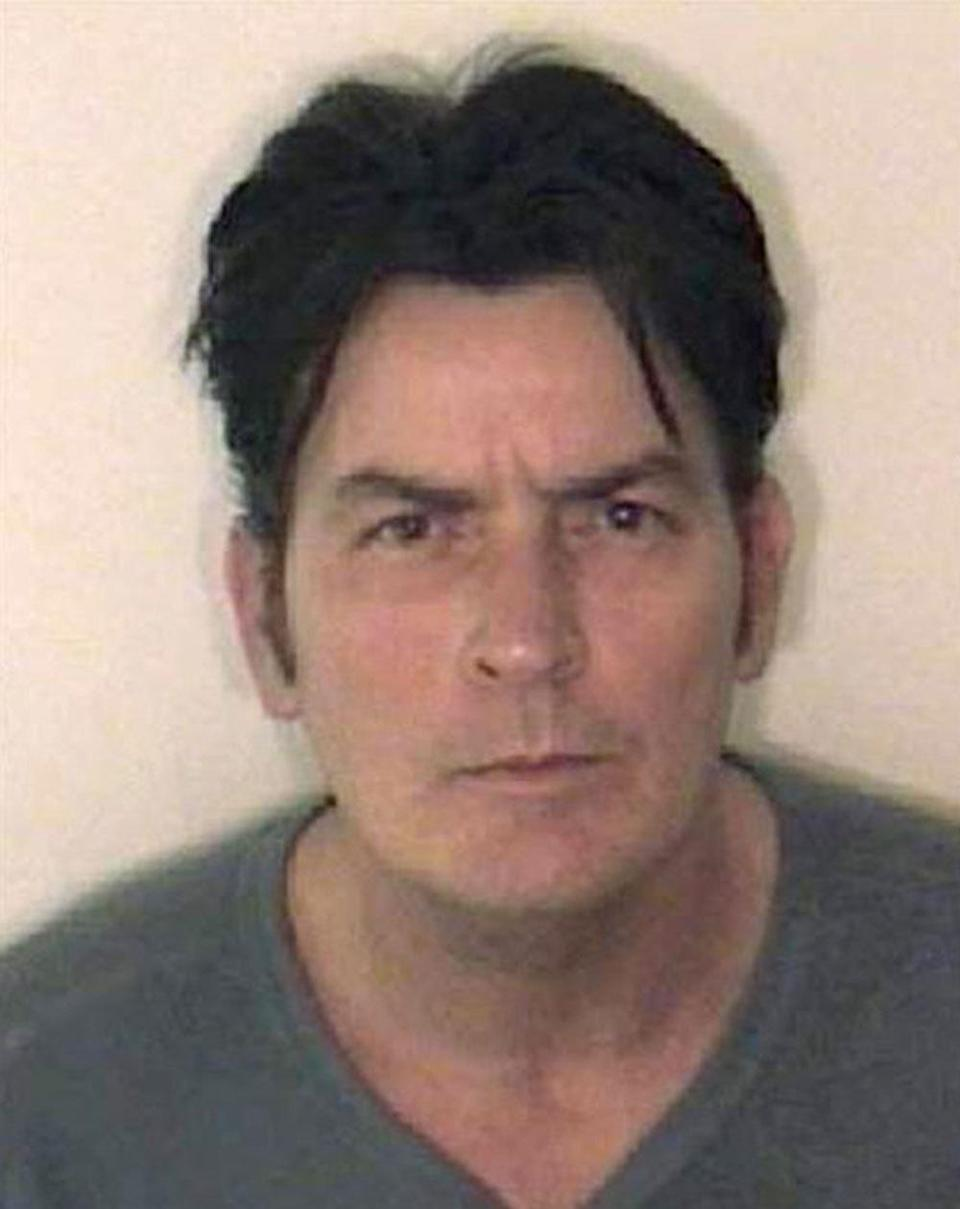 Charlie Sheen The 'Hot Shots' actor was arrested in 2009 in Aspen on a domestic violence charge.