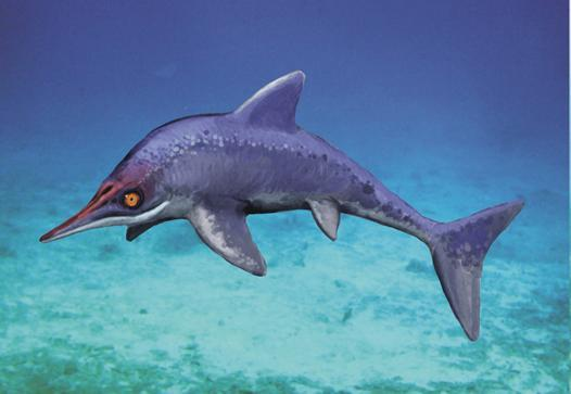 An artist's impression of <i>Malawania</i>, a Jurassic-style ichthyosaur that survived into the Cretaceous.
