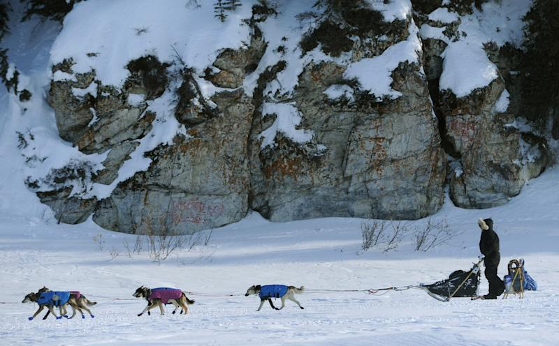 Aaron Burmeister departs the checkpoint in White Mountain, Alaska, during the Iditarod Trail Sled Dog Race on Tuesday, March 13, 2012. (AP Photo/Anchorage Daily News, Marc Lester)