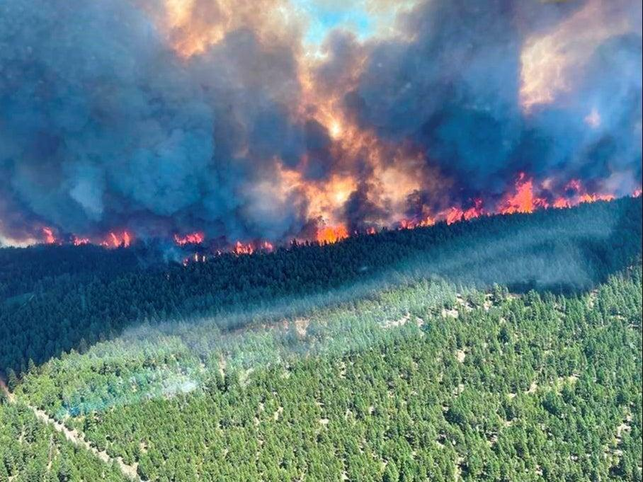 Smoke and flames are seen during the Sparks Lake wildfire at Thompson-Nicola Regional District, British Columbia on 29 June (via REUTERS)