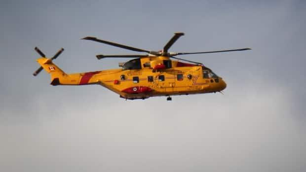 A Cormorant helicopter was used in the search of a missing man in the St. Mary's Bay area on Monday.  (Brett Ruskin/CBC - image credit)