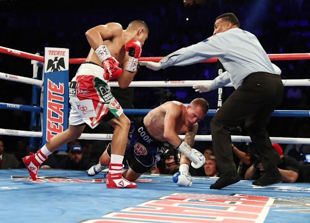 Jaime Munguia had Brandon Cook in trouble with a flurry of punches at both the end of the first and second rounds before unloading in the third (AFP Photo/AL BELLO)