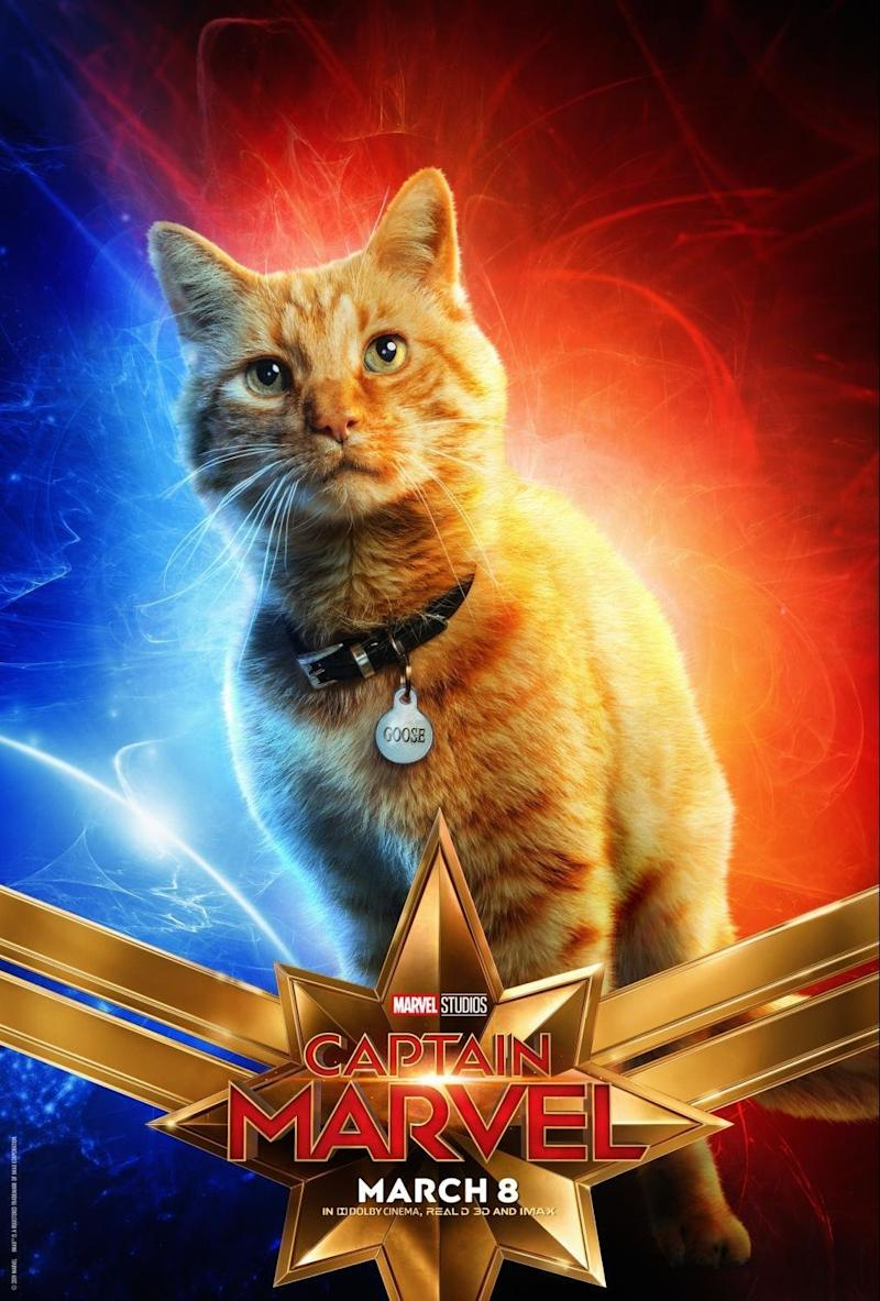 No kitten. (Disney and Marvel)