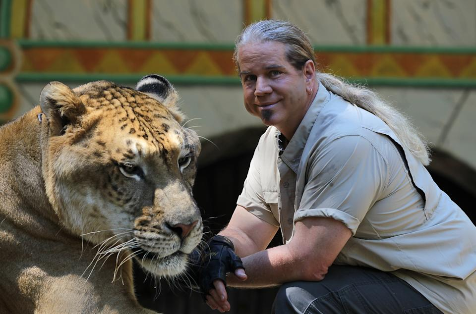 CARVER, MA - SEPTEMBER 29: King Richard's Faire is set to open for the season. Dr. Bhagavan Antle brings animals from his preserve in Myrtle Beach, South Carolina. He is with Hercules the Liger. Hercules is 900 pounds and is in the Guinness Book of World Records as world's largest cat. (Photo by Jonathan Wiggs/The Boston Globe via Getty Images)