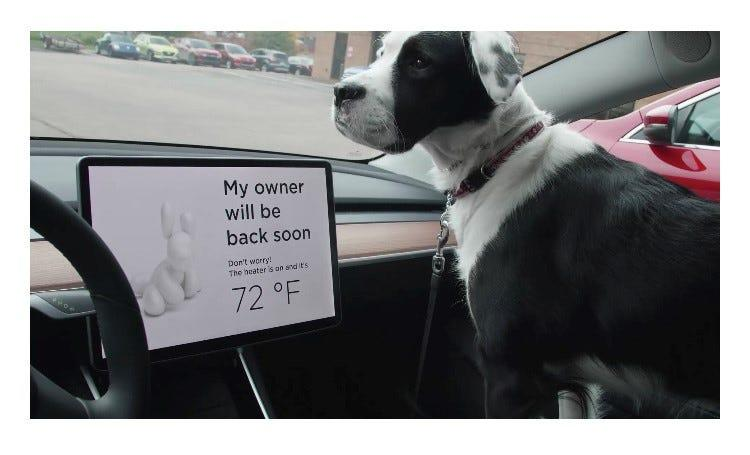 Tesla has dog-safety features including a screen that leaves a message when dogs are left in the heated or air-conditioned vehicle. The 2020 Tesla Model Y is among the Top 10 best vehicles for dog lovers, according to Autotrader.
