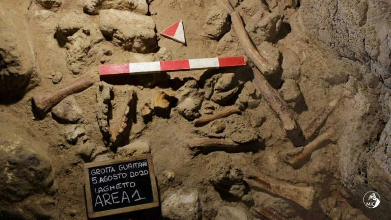 All the fossil remains found in the Guattari Cave are thought to be of adults