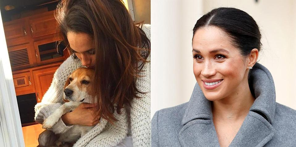 Meghan Markle and her dog, Guy. Image via Instagram/Getty Images.