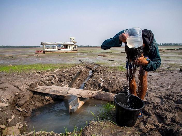 A man uses water from a pond on the dried-up bed of Aleixo Lake, in the rural area of Manaus, Amazonas, Brazil, on October 23, 2015 (AFP Photo/Raphael Alves)