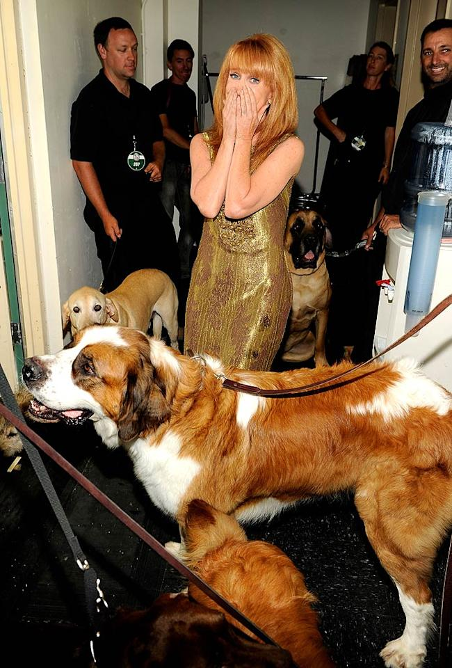 """Hmm, looks like Kathy Griffin -- who took home the honor for Do Something Comedian for her work against cervical cancer and more -- was not feeling the animal love quite as much as Kellan! Kevin Mazur/<a href=""""http://www.wireimage.com"""" target=""""new"""">WireImage.com</a> - July 19, 2010"""