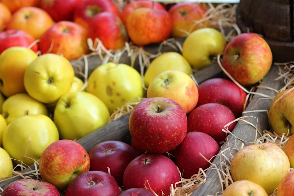 """The fruit you buy at the grocery store isn't as fresh as you think it is. Frankly, thanks to the picking, shipping, and storing process, the <a href=""""https://www.today.com/food/apple-you-just-bought-might-be-year-old-does-it-2D80207170"""" rel=""""nofollow noopener"""" target=""""_blank"""" data-ylk=""""slk:apples that you find at your local store"""" class=""""link rapid-noclick-resp"""">apples that you find at your local store</a> might already be a year old by the time you pick them up, according to Today. The U.S. Department of Agriculture explains how they manage to make it so long, writing, """"To slow the proverbial sands of time, some fruit distributors treat their apple bins with a gaseous compound, 1-methyl cyclopropane (1-MCP). It <a href=""""https://agresearchmag.ars.usda.gov/2007/oct/apples"""" rel=""""nofollow noopener"""" target=""""_blank"""" data-ylk=""""slk:extends the fruits' post-storage quality"""" class=""""link rapid-noclick-resp"""">extends the fruits' post-storage quality</a> by blocking ethylene, a colorless gas that naturally regulates ripening and aging."""""""