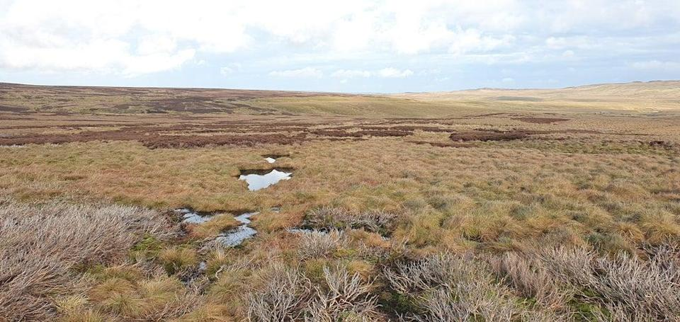 West Arkengarthdale Moor in the Yorkshire Dales, where 1,395 hectares of peatland has been restored (PA Media)
