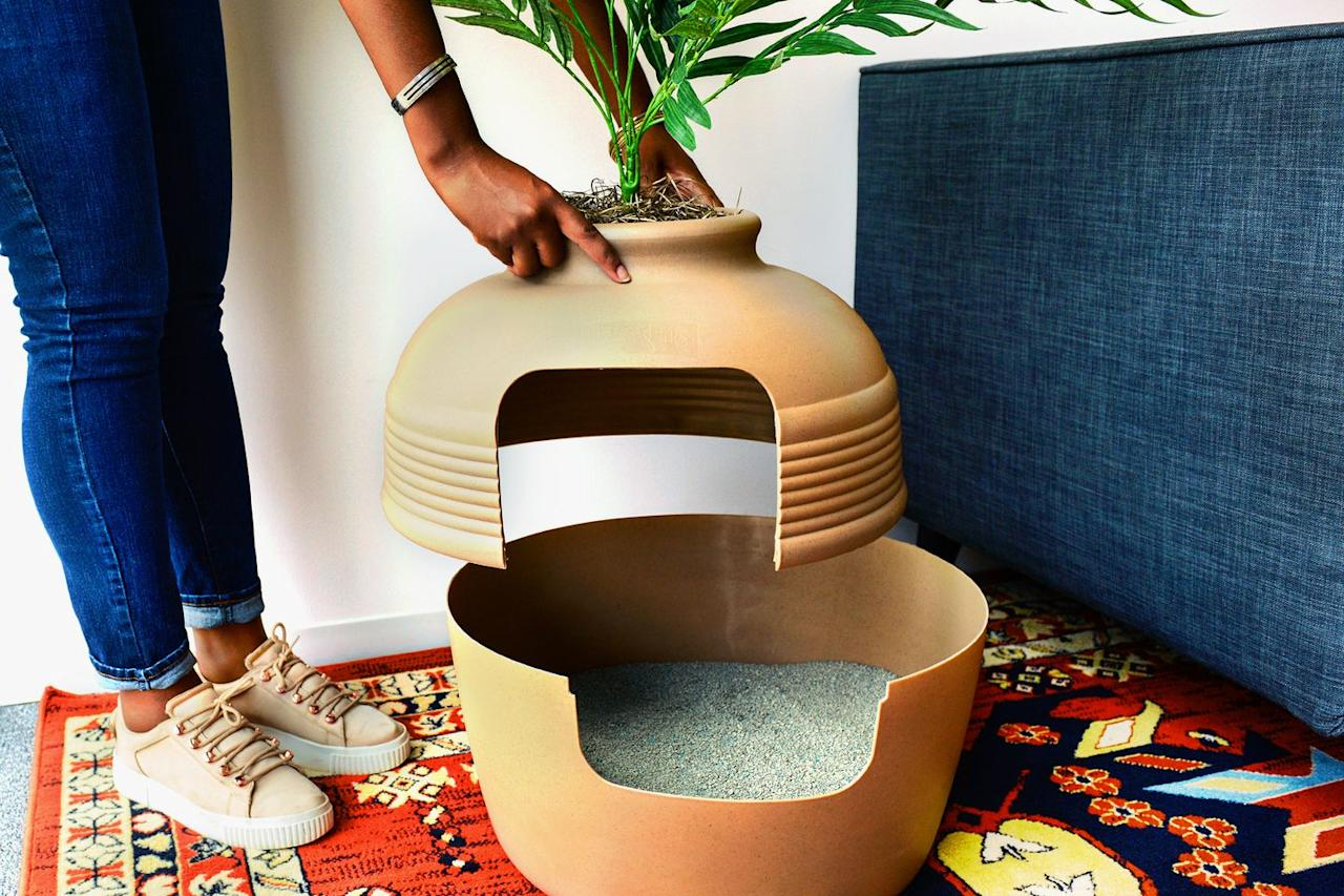The Potted Plant Litter Box