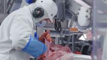 An Olymel employee works in one of the companyÕs Quebec hog-slaughtering plants