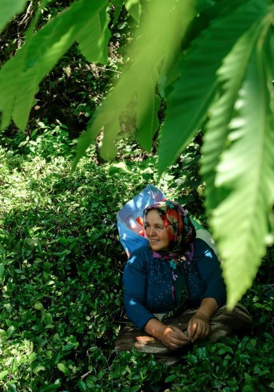 Tea-picker Pervin Bas was among the villagers detained by police for protesting against the quarry