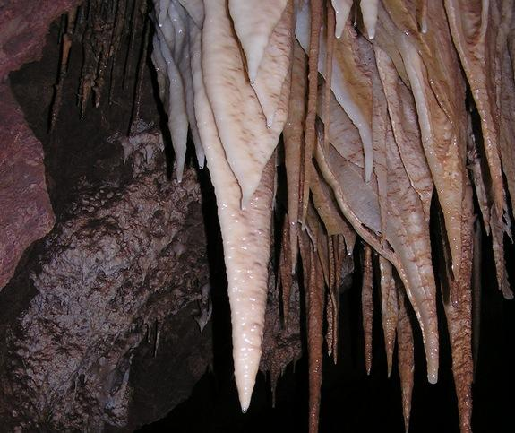 Bizarre Microbes Discovered in Desert Cave