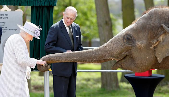 <p>Queen Elizabeth II and Prince Philip, the Duke of Edinburgh, feed bananas to Donna, a 7-year old Asian elephant, as they open the new Centre for Elephant Care at Whipsnade Zoo on April 11, 2017, in Dunstable, England. (Max Mumby/Indigo/Getty Images) </p>