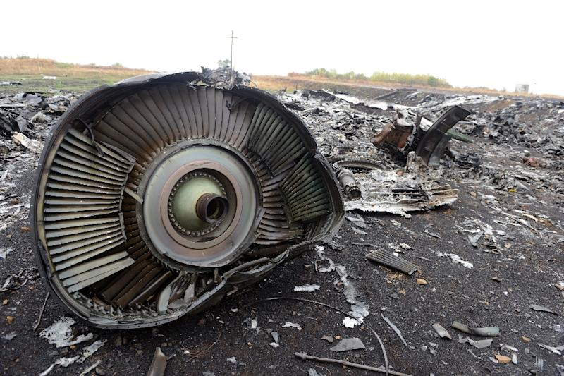 The crash site of Malaysia Airlines Flight MH17 near the village of Hrabove (Grabovo), east Ukraine in September 2014 (AFP Photo/Alexander Khudoteply)