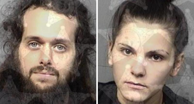 Baby 'close to death' after vegan parents allegedly switched from formula