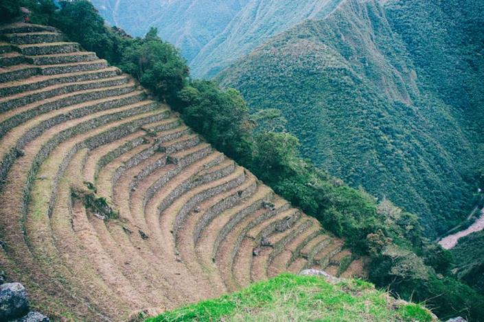 "<span class=""caption"">Incan agricultural terraces in Peru.</span> <span class=""attribution""><a class=""link rapid-noclick-resp"" href=""https://www.shutterstock.com/image-photo/agriculture-centre-terraces-covered-by-grass-1132628009?src=eHPhYo5WW1WElwHxgtE7Kg-1-22"" rel=""nofollow noopener"" target=""_blank"" data-ylk=""slk:Alessandro Vecchi/Shutterstock"">Alessandro Vecchi/Shutterstock</a></span>"