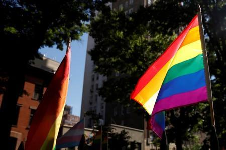FILE PHOTO: A rainbow flag, commonly known as the gay pride flag or LGBT pride flag, blows in the wind inside Christopher Park outside the Stonewall Inn in New York