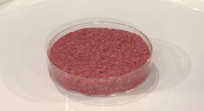 "<span class=""caption"">The world's first cultured hamburger, ready to be fried on August 5 2013.</span> <span class=""attribution""><a class=""link rapid-noclick-resp"" href=""https://en.wikipedia.org/wiki/Cultured_meat#/media/File:First_cultured_hamburger_unbaked.png"" rel=""nofollow noopener"" target=""_blank"" data-ylk=""slk:World Economic Forum/Wikipedia"">World Economic Forum/Wikipedia</a>, <a class=""link rapid-noclick-resp"" href=""http://creativecommons.org/licenses/by/4.0/"" rel=""nofollow noopener"" target=""_blank"" data-ylk=""slk:CC BY"">CC BY</a></span>"