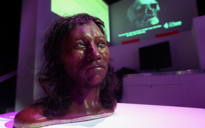 Full facial reconstruction model of a head based on the skull of Britain's oldest complete skeleton on display during a screening event of The First Brit: Secrets Of The 10,000 Year Old Man at The Natural History Museum, in London - PA