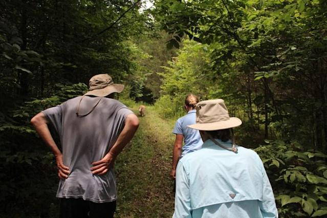 Larkspur Conservation, which offers natural burials, is part of a large park. (Photo: Larkspurconservation.org)