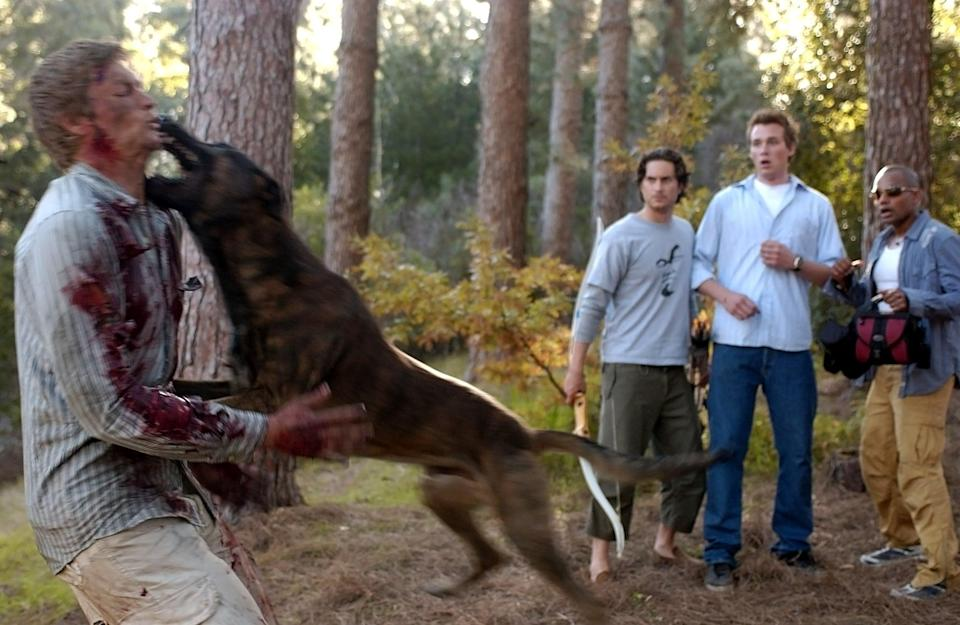 """<p>You'll never want to pet a dog again after you watch this twisted film. When a group of friends go to a cabin for a weekend getaway, they're besieged by ravenous dogs - and it's pretty much all downhill from there.</p> <p><a href=""""https://www.amazon.com/gp/video/detail/B08CMDZTMQ/ref=atv_br_def_r_br_c_unkc_1_1"""" class=""""link rapid-noclick-resp"""" rel=""""nofollow noopener"""" target=""""_blank"""" data-ylk=""""slk:Watch The Breed on Amazon Prime now."""">Watch <b>The Breed</b> on Amazon Prime now.</a></p>"""