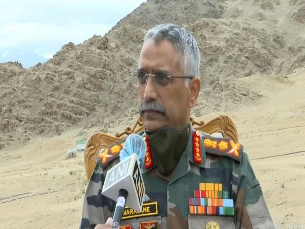 Indian Army Chief General MM Naravane (File Photo)