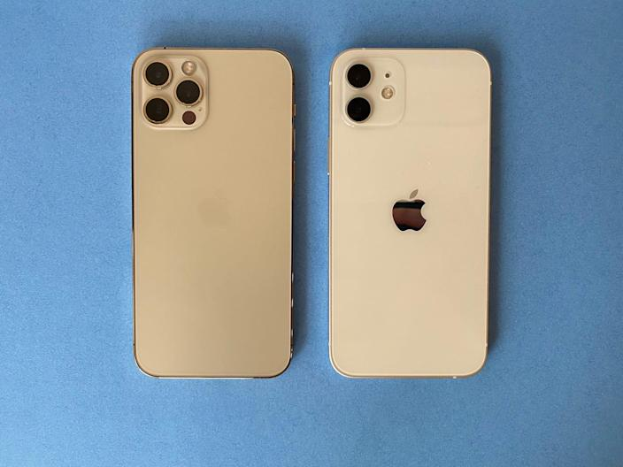 iPhone 12 and Pro Back