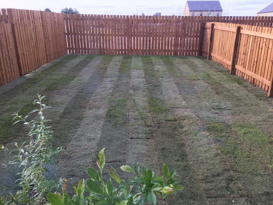 When the couple moved into their new build home in 2018, their garden consisted of nothing more than dried out turf. Photo: Caters