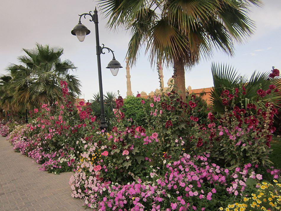 The flower-decked Hurghada Marina on a spring day