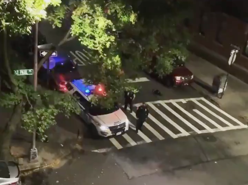 An NYPD officer on Saturday night used his patrol car's loudspeaker to yell: 'Trump 2020!' (@Thumpio)