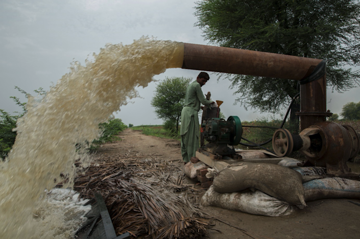 Allah Dir pumps water out of his crop field. Other farmers have seen their crops damaged tooWFP/Arete/Saiyna Bashir