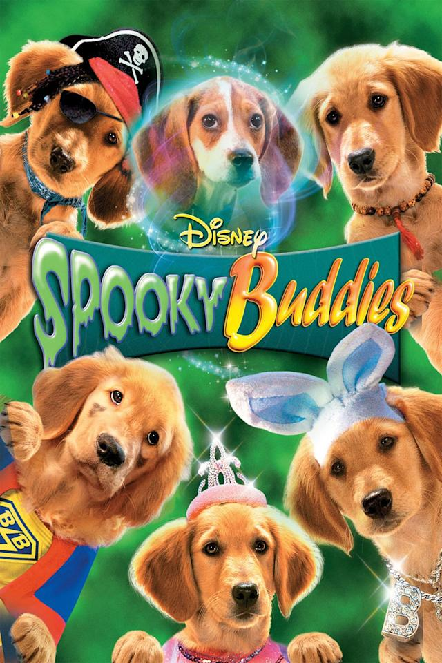 a crew of adorable pups are on a mission in a haunted mansion