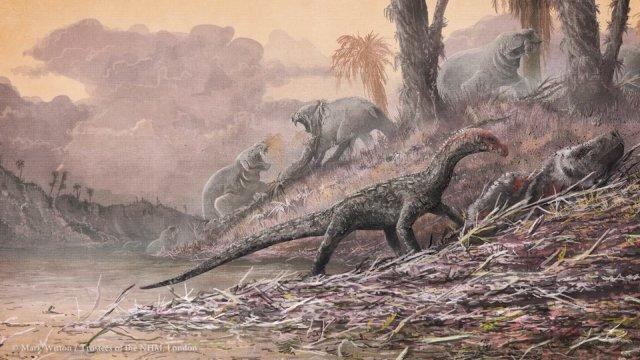 new-pre-dinosaur-fossil-reptile-discovered