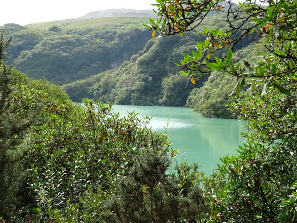 A manmade lake formed from china clay pitPaul Murphy