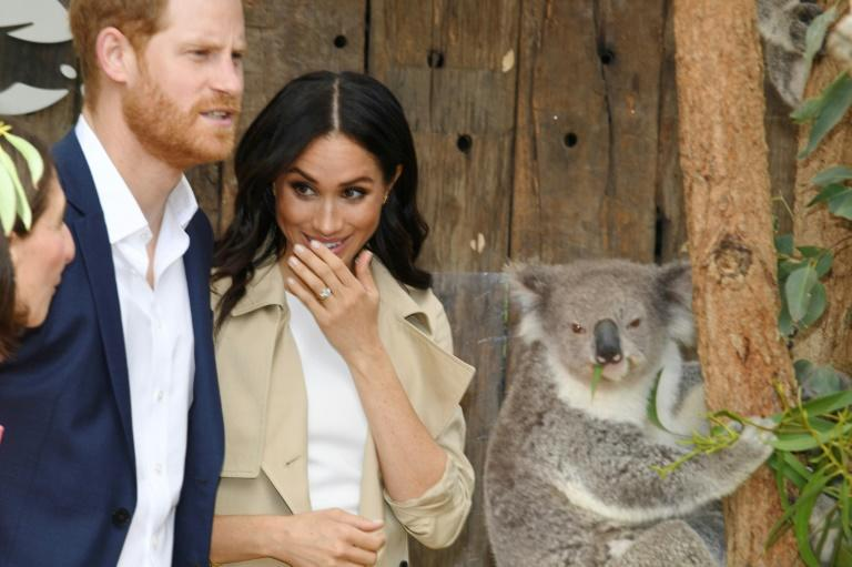 The royal couple met a koala named Ruby at a zoo in Sydney, earlier on their tour Down Under