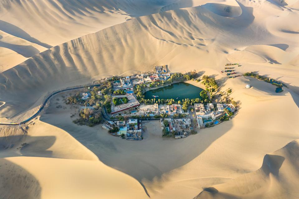 Aerial view of the oasis desert