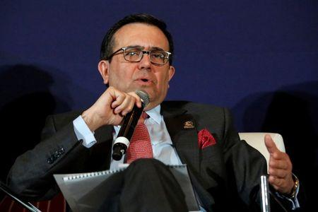 Mexico's Economy Minister Guajardo speaks during an entrepreneurship event in Mexico City