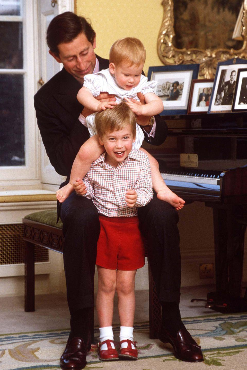 <p>Charles poses with his two sons, Harry and William, for a portrait at Kensington Palace. </p>