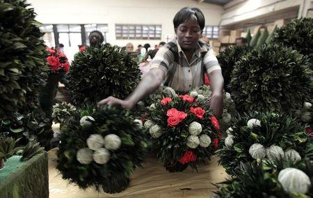 A worker arranges a collection of preserved flowers and foliage at the Vermont Flowers export processing zone (EPZ) factory in Kenya's capital Nairobi