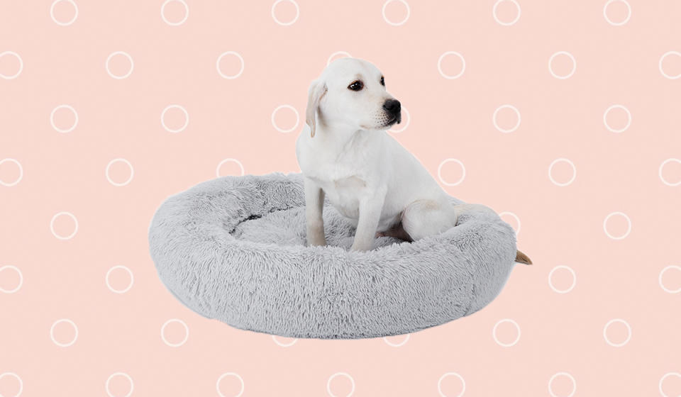 Don't you wish they made this in human sizes? (Photo: Walmart)