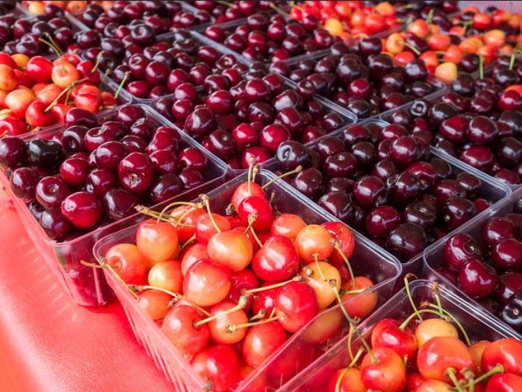 """<p>Sweet and juicy Summer cherries are one of life's greatest simple pleasures. And this mid-Summer jubilee in Traverse City, MI, celebrates the red fruit in all its glory. <a href=""""https://www.cherryfestival.org/"""" class=""""link rapid-noclick-resp"""" rel=""""nofollow noopener"""" target=""""_blank"""" data-ylk=""""slk:The festival"""">The festival</a> began in 1925 and now takes place in July to coincide with the cherry harvest season and Fourth of July holiday. The weeklong celebration in America's cherry capital includes pie-baking contests, pit-spitting competitions, and even a Grand Cherry Parade complete with a Cherry Queen crowning.</p> <p><strong>2020 Dates:</strong> July 4-11</p>"""