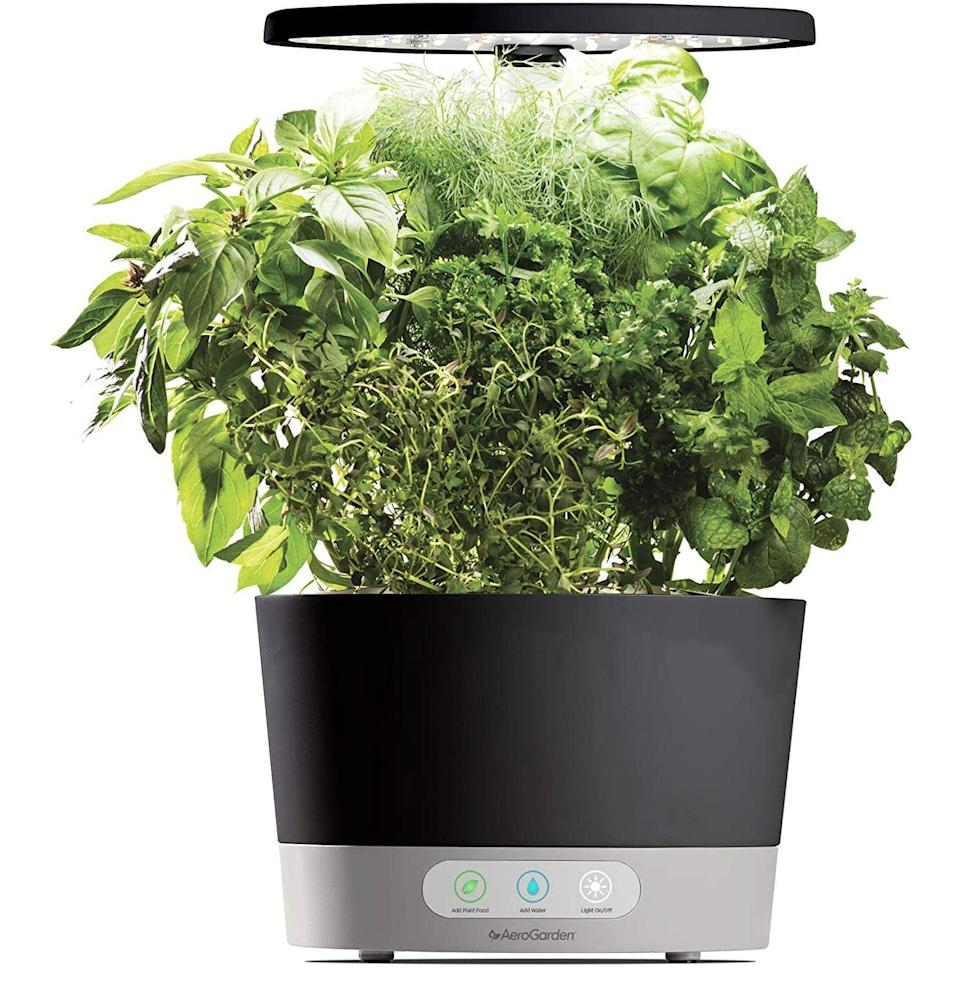 """<p><strong>AeroGarden</strong></p><p>amazon.com</p><p><strong>$84.70</strong></p><p><a href=""""https://www.amazon.com/dp/B07CKNX6C6?tag=syn-yahoo-20&ascsubtag=%5Bartid%7C10054.g.23013003%5Bsrc%7Cyahoo-us"""" rel=""""nofollow noopener"""" target=""""_blank"""" data-ylk=""""slk:Buy"""" class=""""link rapid-noclick-resp"""">Buy</a></p><p>Frankly, this is a gift to you both: a self-watering, self-lit indoor garden that grows a bounty of fresh herbs to give your meals that extra something they've been missing.</p>"""