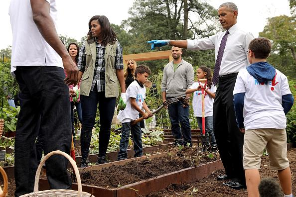 First Lady Michelle Obama and President Barack Obama host an event to harvest the White House Kitchen Garden on the South Lawn of the White House October 6, 2016 in Washington, DC