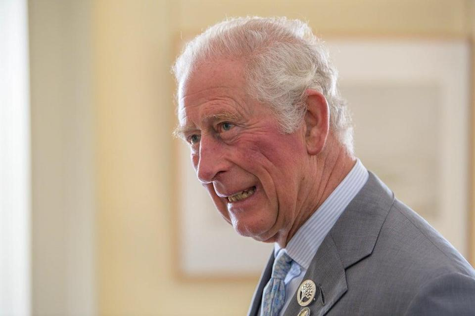 The Prince of Wales gave the opening address via video link at Cop15 (Wattie Cheung/PA) (PA Wire)