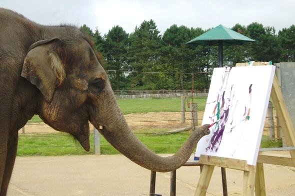 What a trunk! Elephant paintings to go on display at Whipsnade Zoo