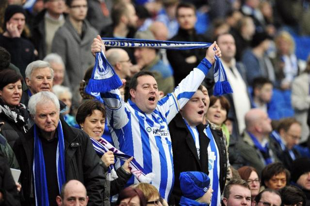 Brighton & Hove Albion are promoted to the Premier League (AFP Photo/GLYN KIRK)